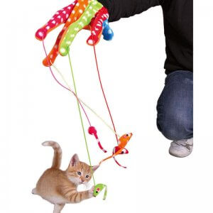 Cat Toys and Cat Scratchers