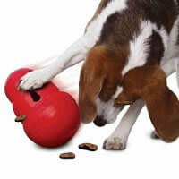Extra Strong Dog Toys