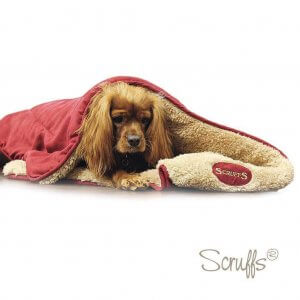 Blankets as Dog Christmas Gifts
