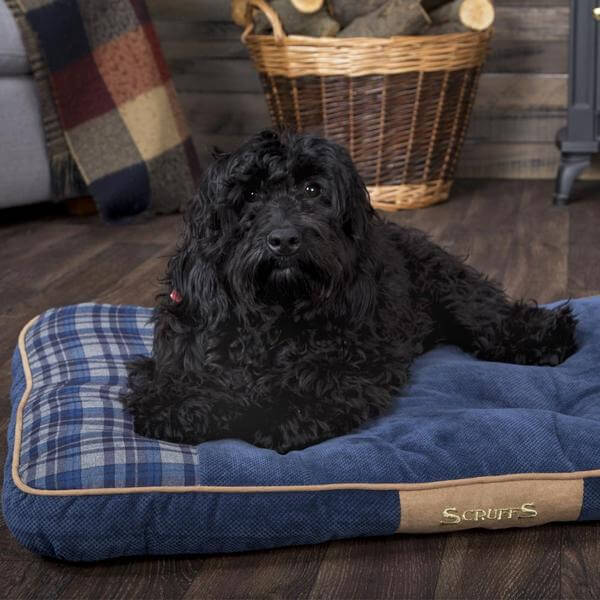 Blue Highland Dog Mattress Bed Ireland