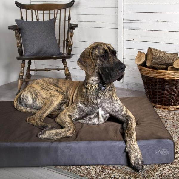 Scruffs Armourdillo Dog Bed Extra Large Brown Ireland