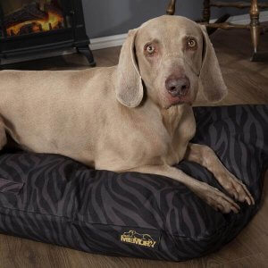Water Resistant Dog Beds