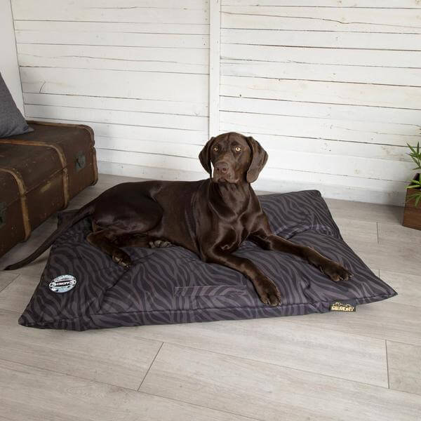Scruffs Expedition Memory Dog Bed Grey