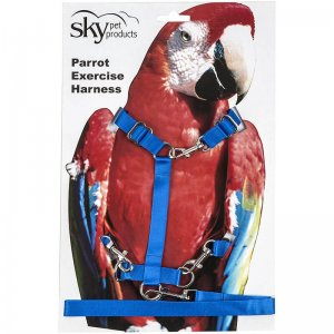 Bird Harness and Parrot Harness