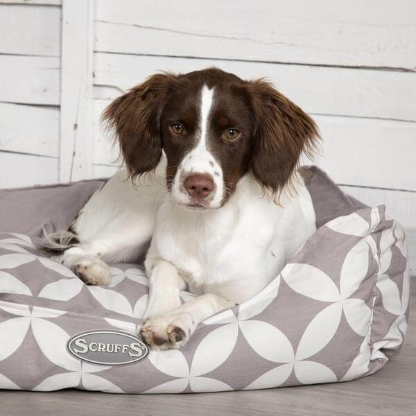 Scruffs Florence Dog Bed Grey